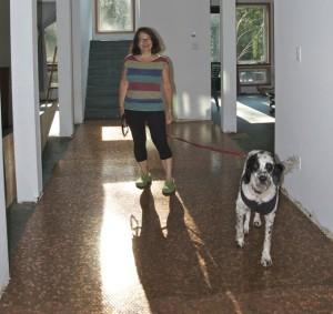 bc zinfandel penny floor, tastingroomconfidential.com